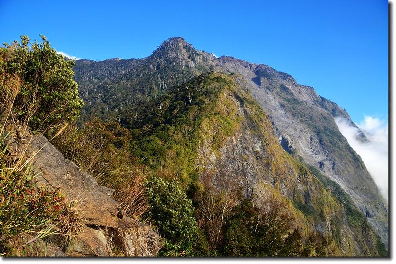 北大武山登山步道3.8K光明頂東望北大武西稜