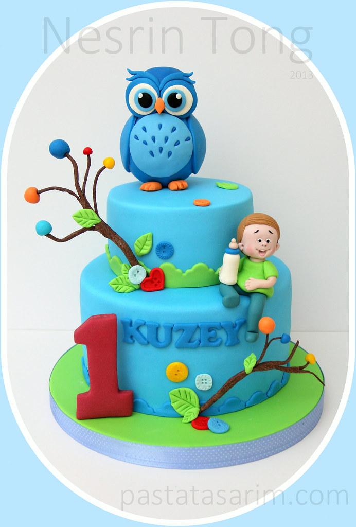 Blue Owl 1st Birthday Cake Cake By Nesrn Tong Flickr