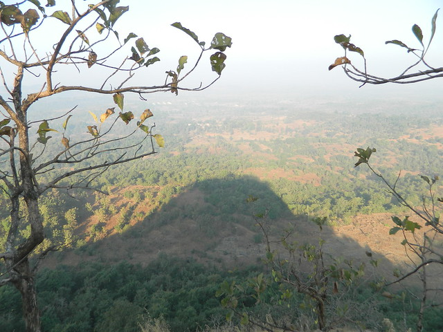Surrounding Area and Mangad Shadow