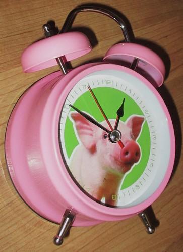 wecker mit tierger uschen schwein grunzt happy animal flickr. Black Bedroom Furniture Sets. Home Design Ideas