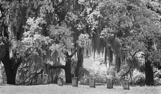 Fort King George Gravestones | by valinreallife