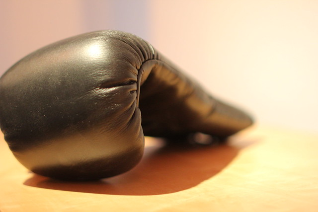 Boxing Glove / Boxhandschuh