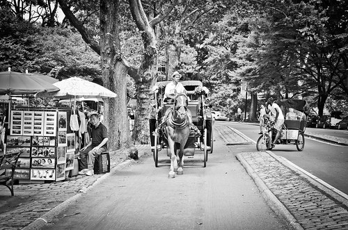 Central Park Hansom Cab