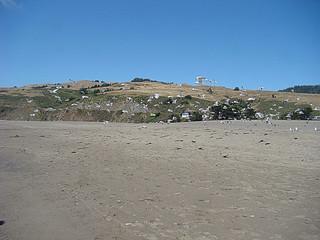 080 Goat Rock State Beach