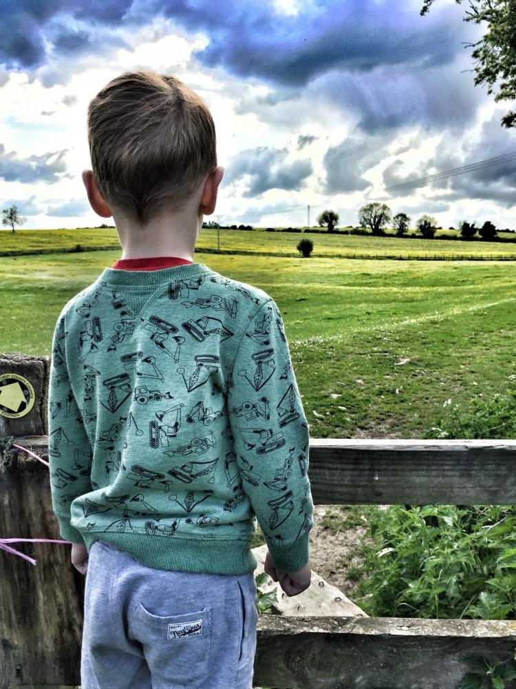 geocaching fields