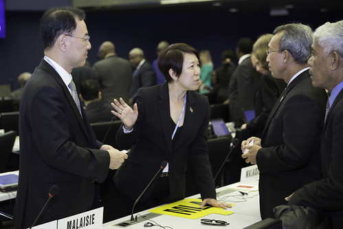 ITU Council 2014 | by ITU Pictures