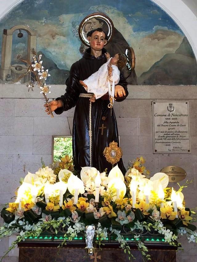Noicattaro. Festa S. Antonio intero