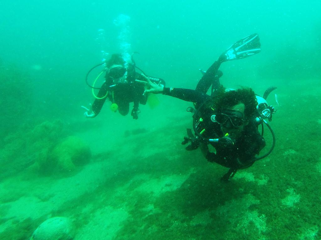 Tayrona and Diving