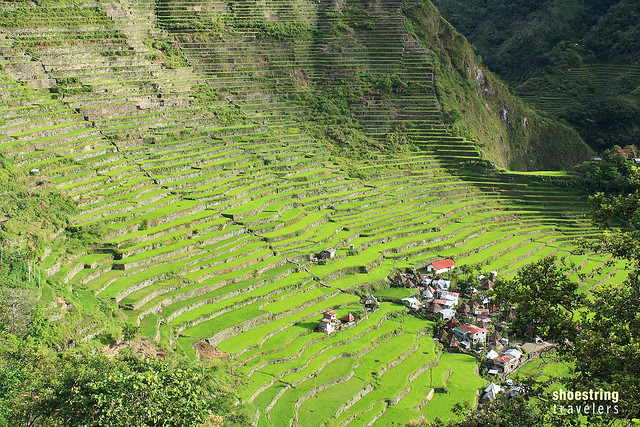 Batad Rice Terraces in early morning light