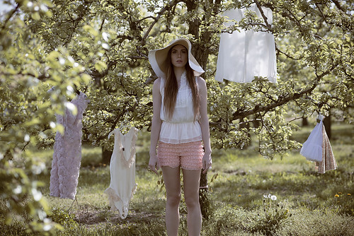 Orchard of Delights | by Daniela Majic