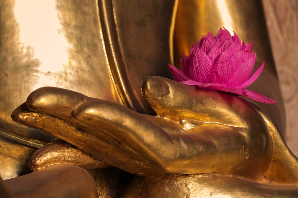 Buddha hand and lotus flower inside htilominlo pahto bag flickr buddha hand and lotus flower inside htilominlo pahto bagan myanmar by anita gilmore mightylinksfo