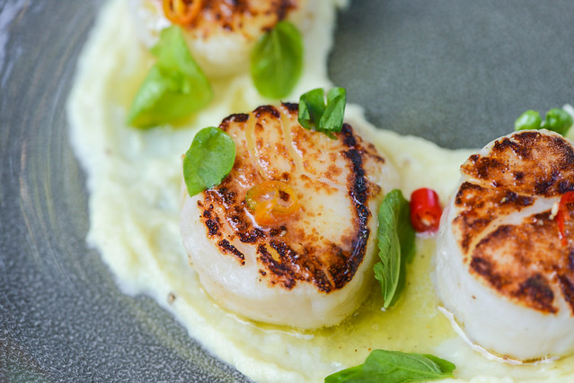 Grilled Scallops with Yuzu Vinaigrette