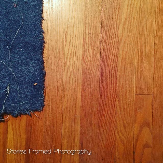 365. | carpet and wood.