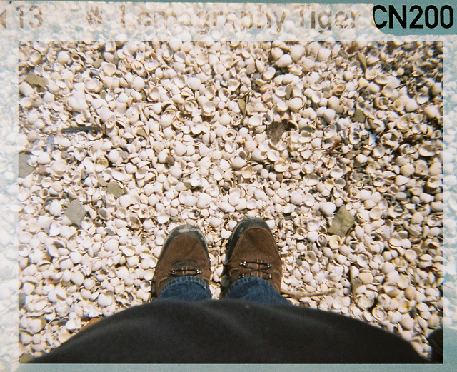 shoes upon the shore