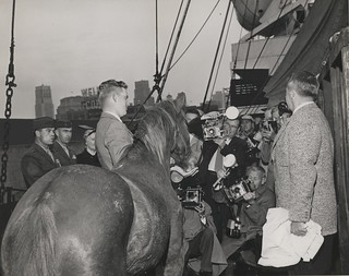 Reckless Arrives in America, 10 November 1954 | by Archives Branch, USMC History Division