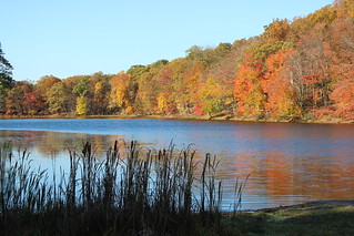 Mill Pond - Fall Colors | by Mike Roush Photography - Berks Awhile