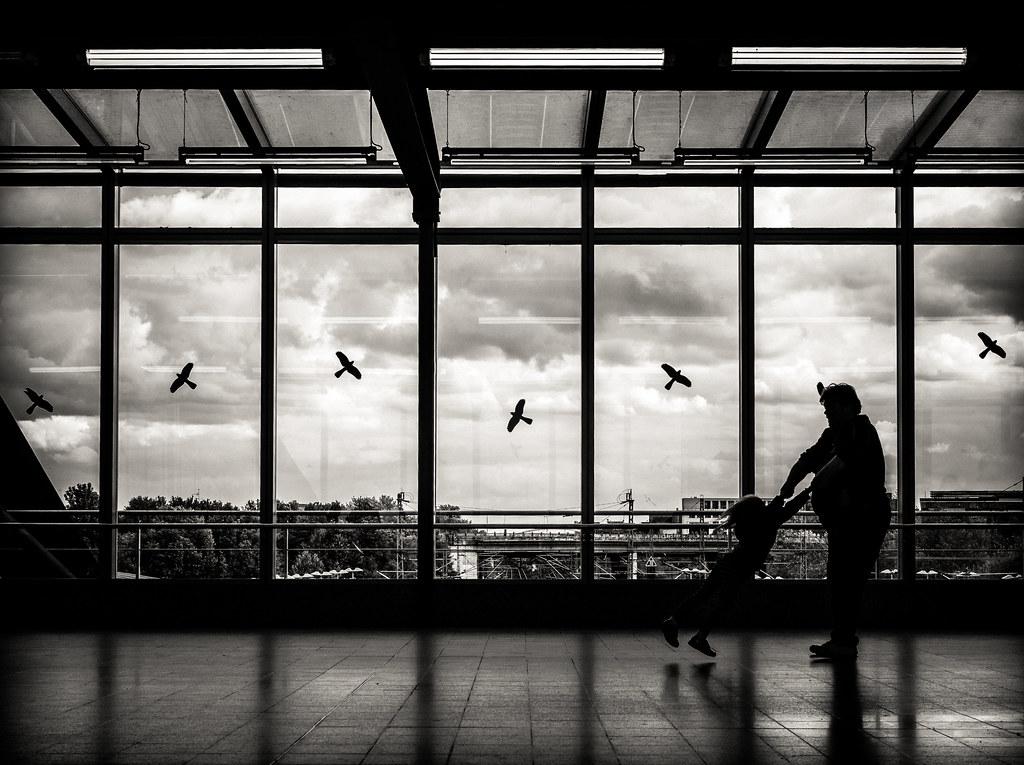 Lyric i ll fly away lyrics : i'm.like.a.bird.i'll.only.fly.away | Olympus OM-D E-M10 Mk.I… | Flickr