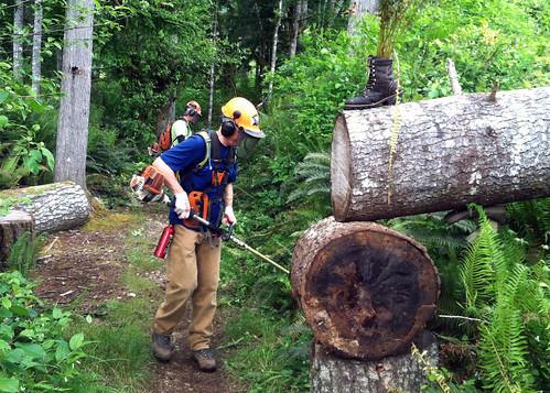 Natural Log Of Graham S Number
