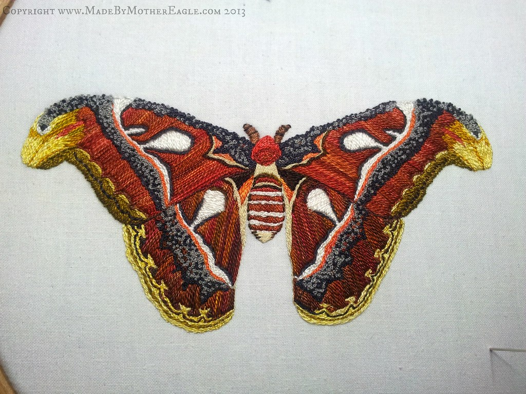 Giant Atlas Moth Hand Embroidery Private Commission 2013 Flickr