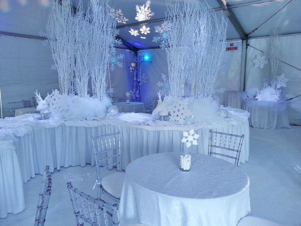 Snow Themed Wedding Reception Evans Audio Visual Flickr