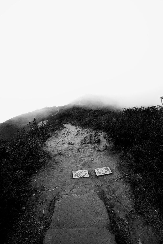 Misty At The Top