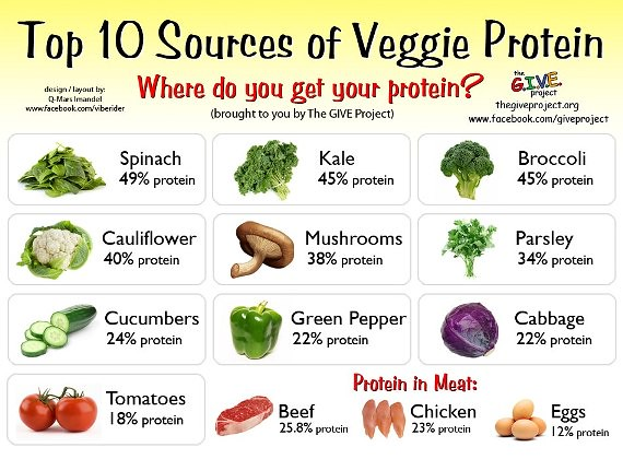 Vegetable Protein Chart: Top-10-Sources-of-Veggie-Protein | Melissamade | Flickr,Chart