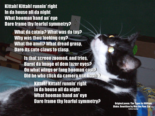 Max does Poetry! Tyger by William Blake | by KathlynH
