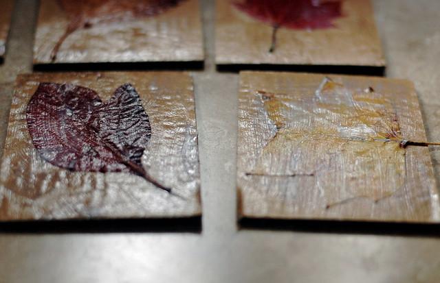 Sticks & Leaves: Rubbing Plates