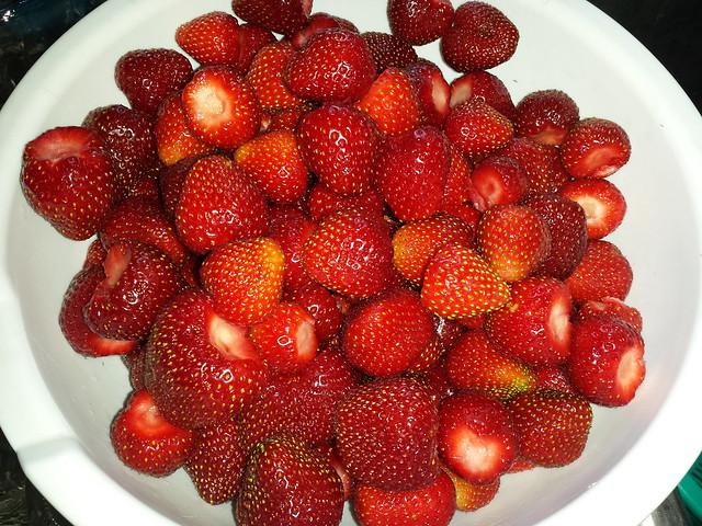 strawberries--2016