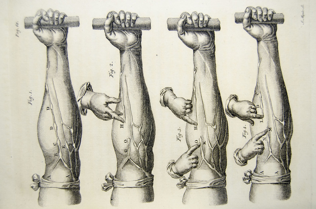 William Harvey De Motu Cordis - veins of the arm | Fig.1-Fig… | Flickr