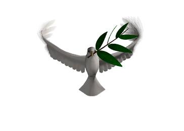 Animasi Bergerak Burung Terbang Allhabassy Flickr