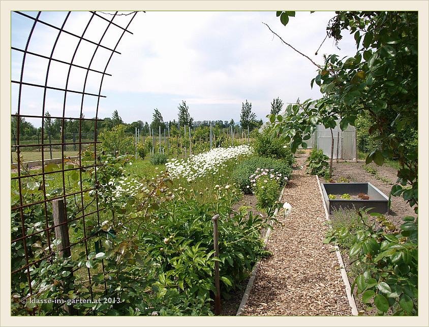 Garten K Rankgitter Baustahl 2013 05 Long Axis Of Veggie Flickr