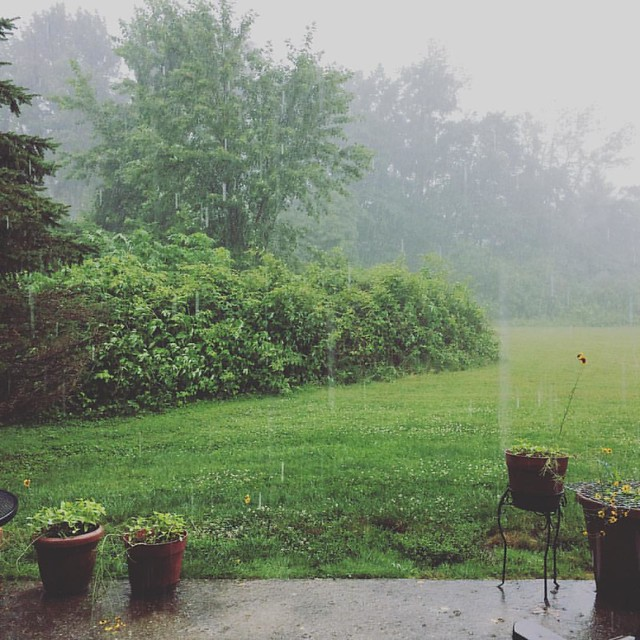 Rain #rain #rainyday #storm #storms