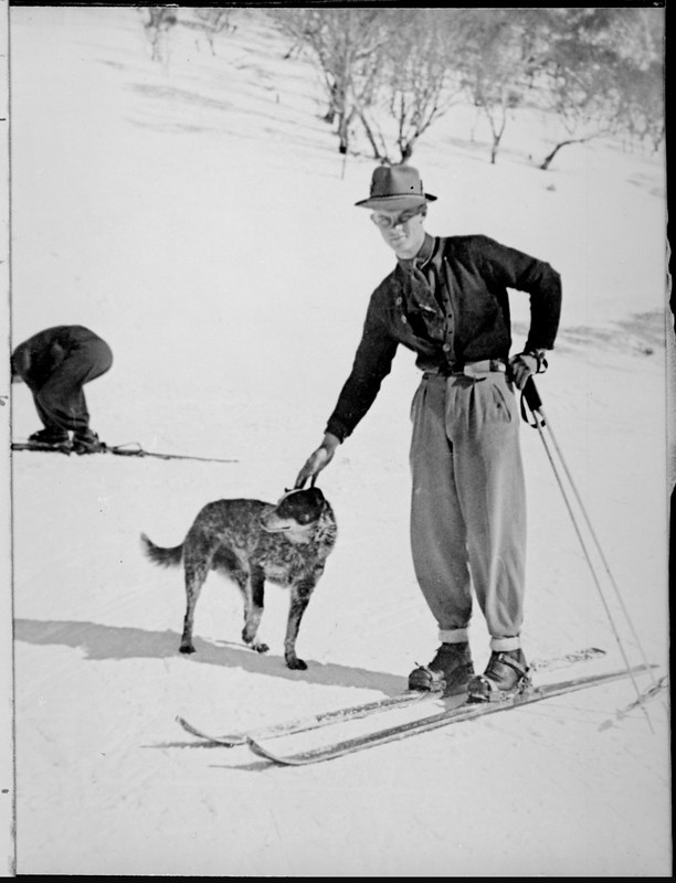 Man standing on snow skis patting a dog, Snowy Mountains, New South Wales, ca. 1930.