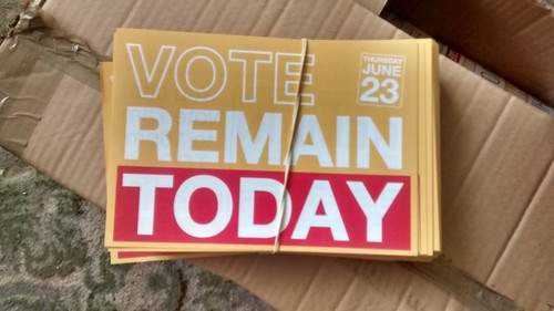 Vote Remain leaflets June 16