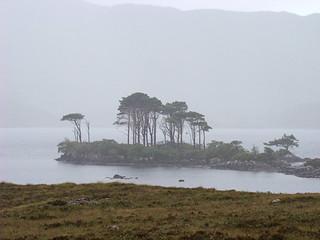 054 Bomen op eilandje in Loch Assynt