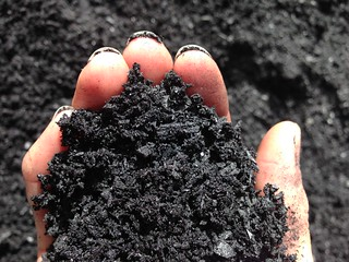 Fwd: Biochar in the hand photo pic | by mavnjess