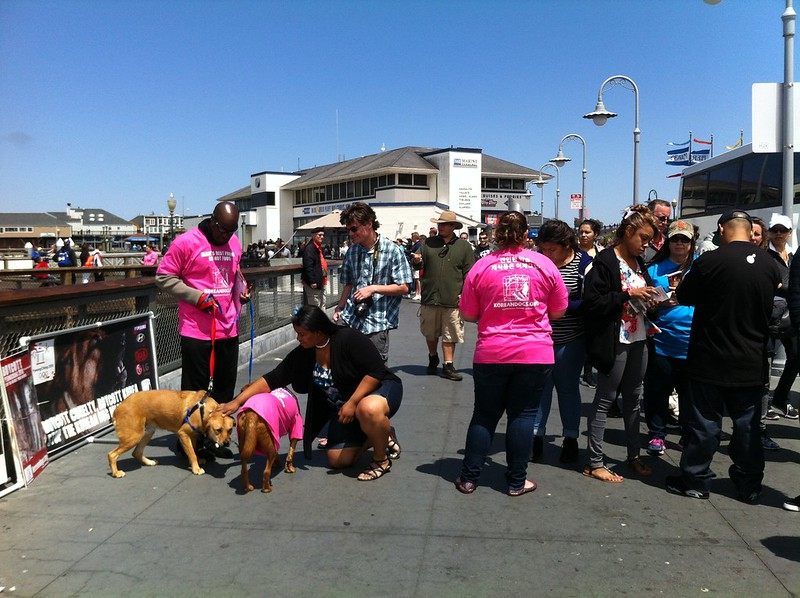 San Francisco, Fisherman's Wharf Leafleting Event – July 3, 2016