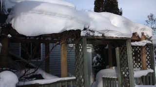 Pergola Winter Update (or is it an arbor?) | by rgdaniel