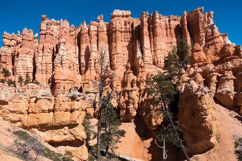 Bryce Canyon-00352