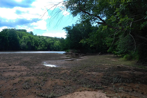 Goat Island in the Broad River-79