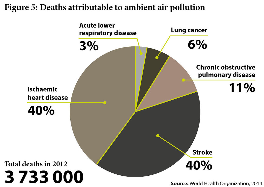 Deaths Attributable To Ambient Air Pollution A Pie Chart D Flickr