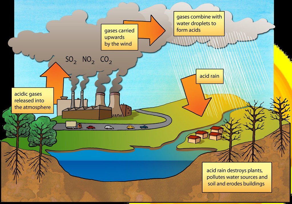 Soil Flow Chart: Acid rain diagram | Illustration used in Gr 7-9 Natural Scieu2026 | Flickr,Chart