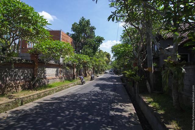 Ubud1-56