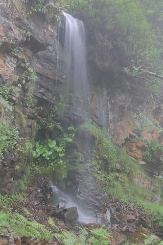 Parque Natural de #Gorbeia #Orozko #DePaseoConLarri #Flickr -179