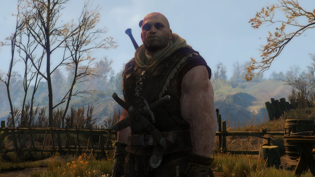bs.to witcher