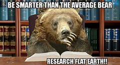 28157463832_7d22d8cae1_m be smarter than the average bear be smarter than the avera flickr
