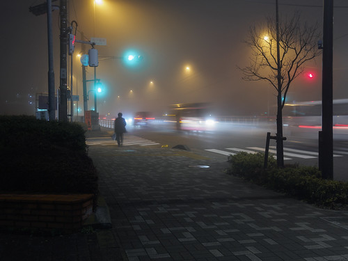 a foggy night | by cat.fukao