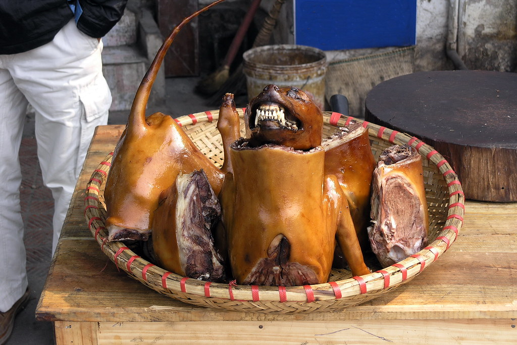 Vietnam - Hanoi - Dog Butcher - 15