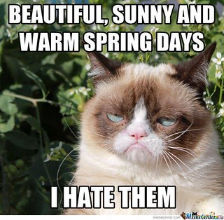Grumpy Cat hates spring | by slapcaption